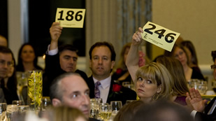 Auction in 2011